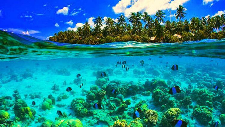 Catamaran Charter seychelles